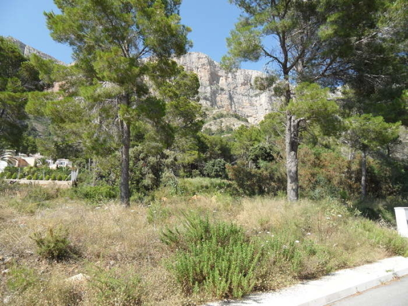 One of three plots available on Montgo